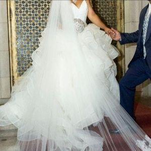 Gorgeous Vera Wang wedding dress and veil